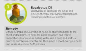Hay Fever Relief Eucalyptus Oil