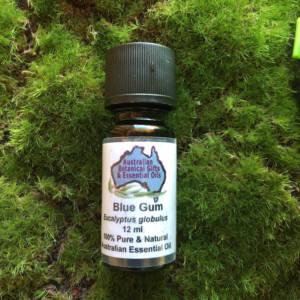 Eucalyptus Blue Gum Essential Oil 12ml