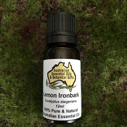 Eucalyptus Lemon Ironbark