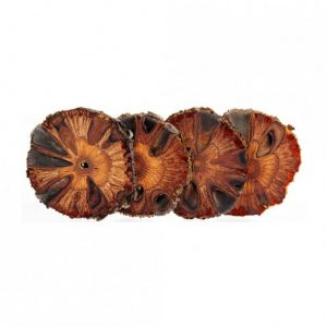 Banksia Drink Coasters Set of 6