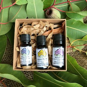 Australia Essential Oils Favourites Gift Box: Blue Gum, Lemon Myrtle and Rosalina